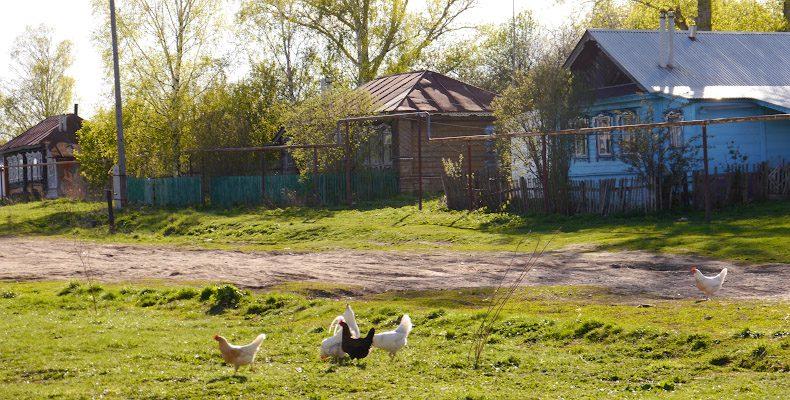 Мой дом — село Перемчалки
