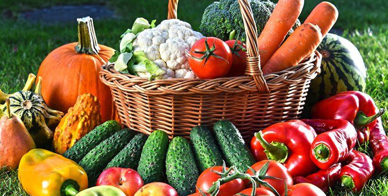 Как вырастить здоровый урожай?