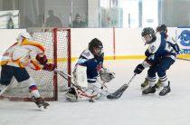 Праздник хоккея