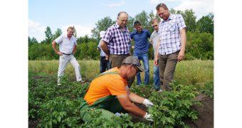 День поля в Лукояновском районе